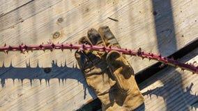 Taggar och handske på trä arkivfoto