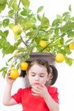 Taggiga citrontaggar Arkivfoto