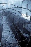 Taggtråd runt om fängelseområde Arkivbilder