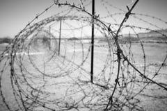 taggtrådar arkivbild