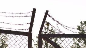 Taggtrådmetallstaket i den guld- timmesolnedgången för afton - tecken av faraburen och ingen frihet