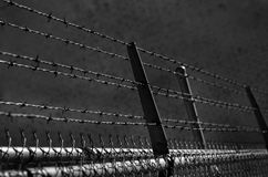 Taggtrådsäkerhetsstaket Arkivbild