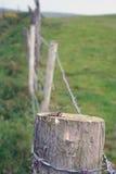 Taggtrådstaketstolpe Royaltyfria Bilder