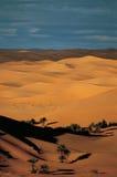 Taghit, Bechar, Αλγερία Στοκ Εικόνες