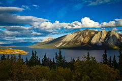 Tagish See, Bove Island, Yukon und Briten Columb Stockfotografie