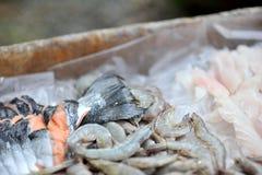 Tagli dei frutti di mare Immagini Stock