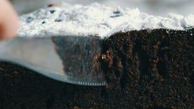 Tagli del coltello vista del primo piano della pasta del dolce del brownie del cioccolato una macro archivi video