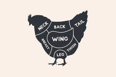 Tagli del pollo Diagrammi per di macelleria Schema del pollo Fotografie Stock Libere da Diritti