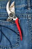 Tagli della potatura nella tasca delle blue jeans Fotografia Stock Libera da Diritti