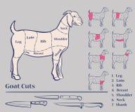 Tagli di carne della capra Fotografia Stock