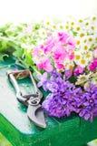 Tagli di recente i vari tipi di fiori sulla tavola verde Fotografie Stock