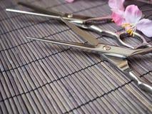 Tagli di taglio dei capelli Fotografie Stock Libere da Diritti