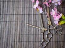 Tagli di taglio dei capelli Immagini Stock