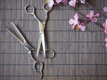 Tagli di taglio dei capelli Fotografie Stock