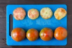 Tagli i pomodori su un vassoio blu osservato da sopra Fotografie Stock