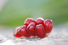 Tagli i semi maturi del melograno Immagini Stock
