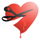 Tagli il cuore Fotografia Stock Libera da Diritti