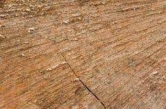 Tagli il fondo di legno Fotografie Stock Libere da Diritti