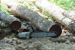 Tagli il legno con il puzzle in officina Immagine Stock