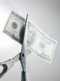 Tagli la spesa Immagine Stock Libera da Diritti