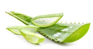 Tagli le foglie dell'aloe fotografia stock