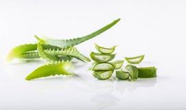 Tagli le foglie di Vera dell'aloe su fondo bianco Fotografia Stock