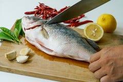 Tagliando il pesce per la spigola cuocia a vapore con il limone, l'aglio ed il peperoncino rosso Immagine Stock