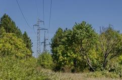Tagliando nella foresta con l'elettrodotto elettrico, Razgrad Fotografia Stock