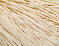 Tagliatella di bianco cinese Fotografia Stock