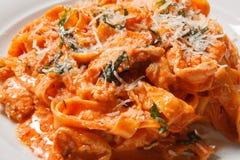 Tagliatelle макаронных изделий с томатом на белой предпосылке стоковые фотографии rf