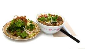 Tagliatelle asiatiche del manzo di stile in minestra Fotografie Stock