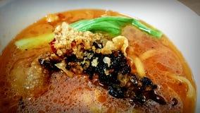 Tagliatelle asiatiche piccanti della tagliatella della minestra di Laksa Immagine Stock
