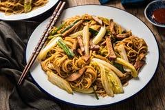 Tagliatelle cinesi con carne di maiale, il cavolo di Napa e la cipolla verde Immagine Stock Libera da Diritti