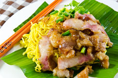 Tagliatelle cinesi dell'uovo con carne di maiale Fotografia Stock