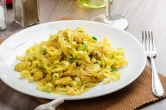 Tagliatelle con il curry, il porro e l'aglio del pollo Fotografia Stock Libera da Diritti