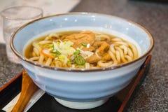Tagliatelle del Udon con il tofu Fotografia Stock Libera da Diritti
