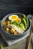 Tagliatelle di ramen giapponesi casalinghe del tofu del vegano fotografia stock libera da diritti