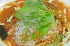 Tagliatelle di riso tailandesi che condiscono curry con la verdura fresca sul piatto fotografia stock libera da diritti