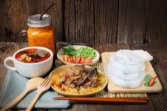 Tagliatelle di riso tailandesi con il curry del pollo in latte di cocco Fotografia Stock