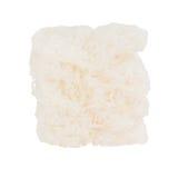 Tagliatelle konjac di Shirataki isolate su bianco fotografia stock libera da diritti
