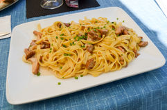 Tagliatelle with porcini mushrooms royalty free stock images