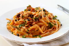 Tagliatelle with tuna Royalty Free Stock Photos