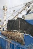 Tagliatore del tonno al bacino Immagine Stock
