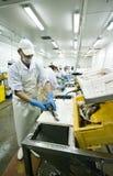 Taglierina abile dei pesci fotografia stock libera da diritti