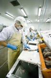Taglierina abile dei pesci fotografie stock libere da diritti