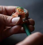 Taglierina della penna Fotografia Stock