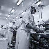 Taglierine dei pesci sul lavoro Immagine Stock Libera da Diritti