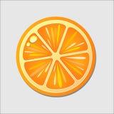 Taglio arancione dentro a metà Agrume isolato su fondo bianco illustrazione di stock
