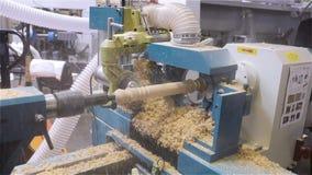 Taglio calcolato su un albero, i tagli a macchina una figura da un albero, macchina di CNC, fabbrica della mobilia, i tagli a mac stock footage