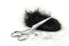 Taglio dei capelli umani immagine stock libera da diritti